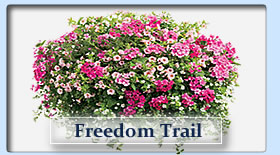 Duerr's Greenhouses Freedom Trail