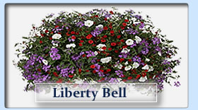Duerr's Greenhouses Liberty Bell